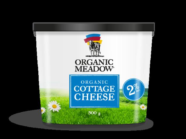 Elegant Cottage Cheese